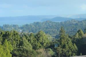 Titirangi and  from Te Uru
