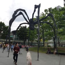 9_Spider Sculpture